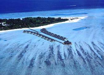 paradise-island-2-resized.jpg